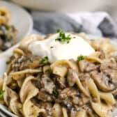 A plate of mushroom stroganoff topped with sour cream