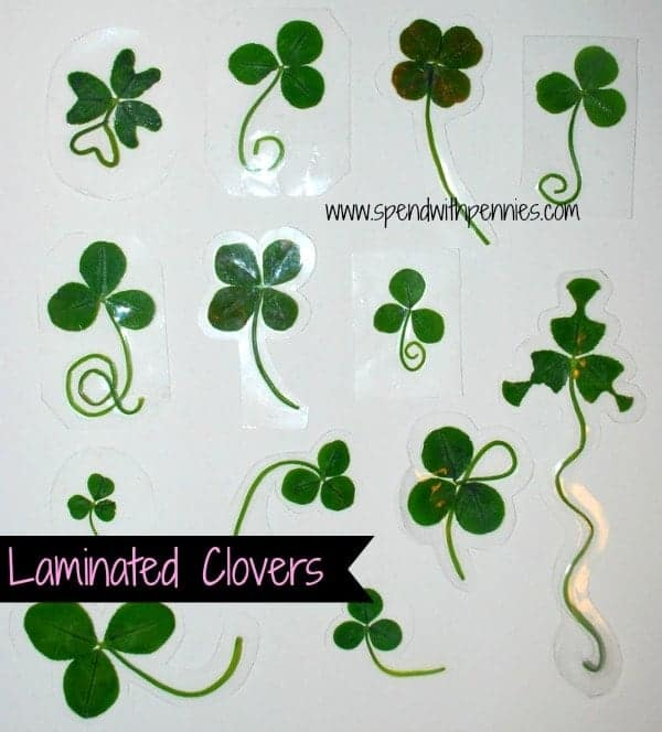 Laminated Clovers & Clover Book Marks! - Spend With Pennies