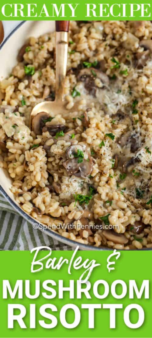 Barley & Mushroom Risotto prepared in a pot.