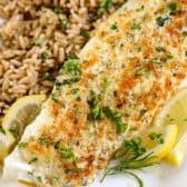 Parmesan Broiled Tilapia on a white plate with brown rice on the side