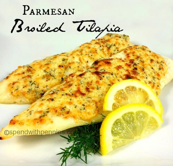 Parmesan Broiled Tilapia Recipe. This is a great and quick recipe it's ...