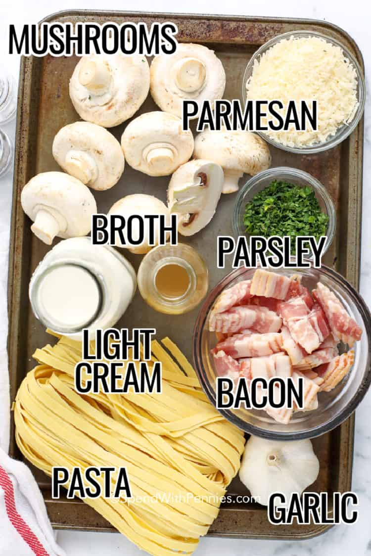ingredients to make Creamy Mushroom Pasta with Bacon