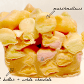 closeup of white chocolate peanut butter squares