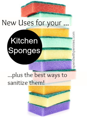new uses for kitchen sponges