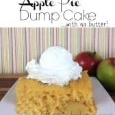 apple pie dump cake with ice cream on top and apples in the background
