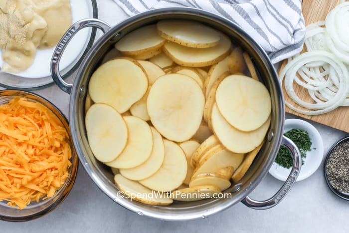 A pot full of potato medallions surrounded by cheese and other cheesy scalloped potato ingredients.