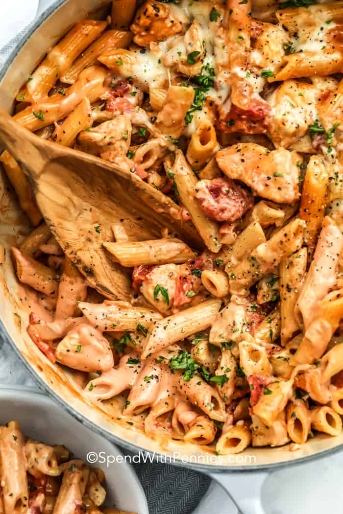 Close up of one pot chicken pasta.
