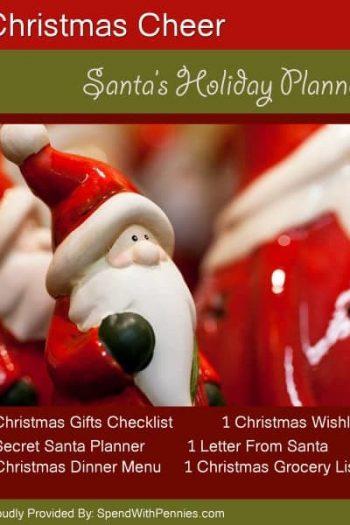 christmas Santa closeup