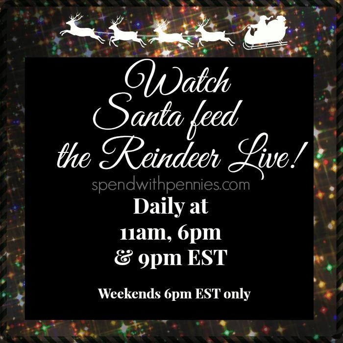 feed the reindeer