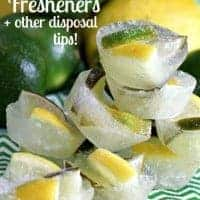 Homemade Citrus Disposal Fresheners + how to keep your disposal sharp and clean!!!.jpg