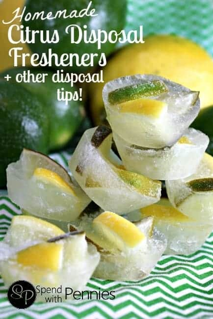 Homemade Citrus Disposal Fresheners + how to keep your disposal sharp and clean!