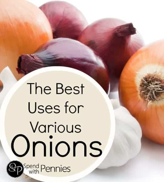 The Best Uses for Various Types of Onions!