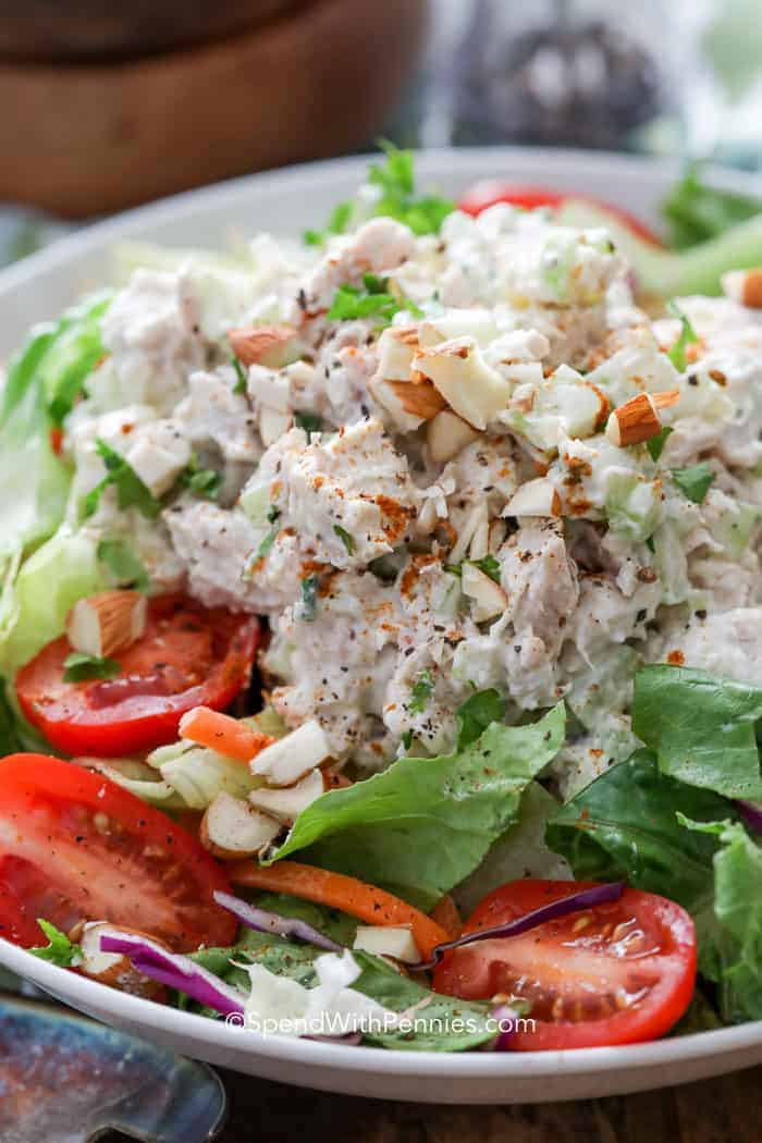 Chicken salad with tomatoes on a bed of lettuce