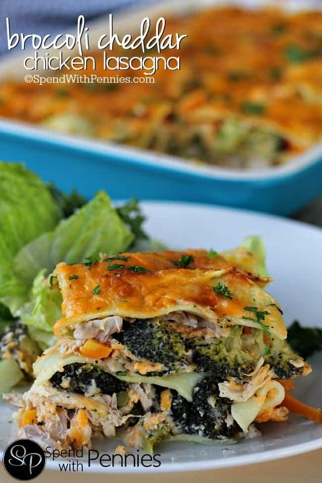 Broccoli Cheddar Chicken Lasagna! This is THE BEST lasagna recipe.. honestly, when I make it I end up eating it for breakfast if there's any left!