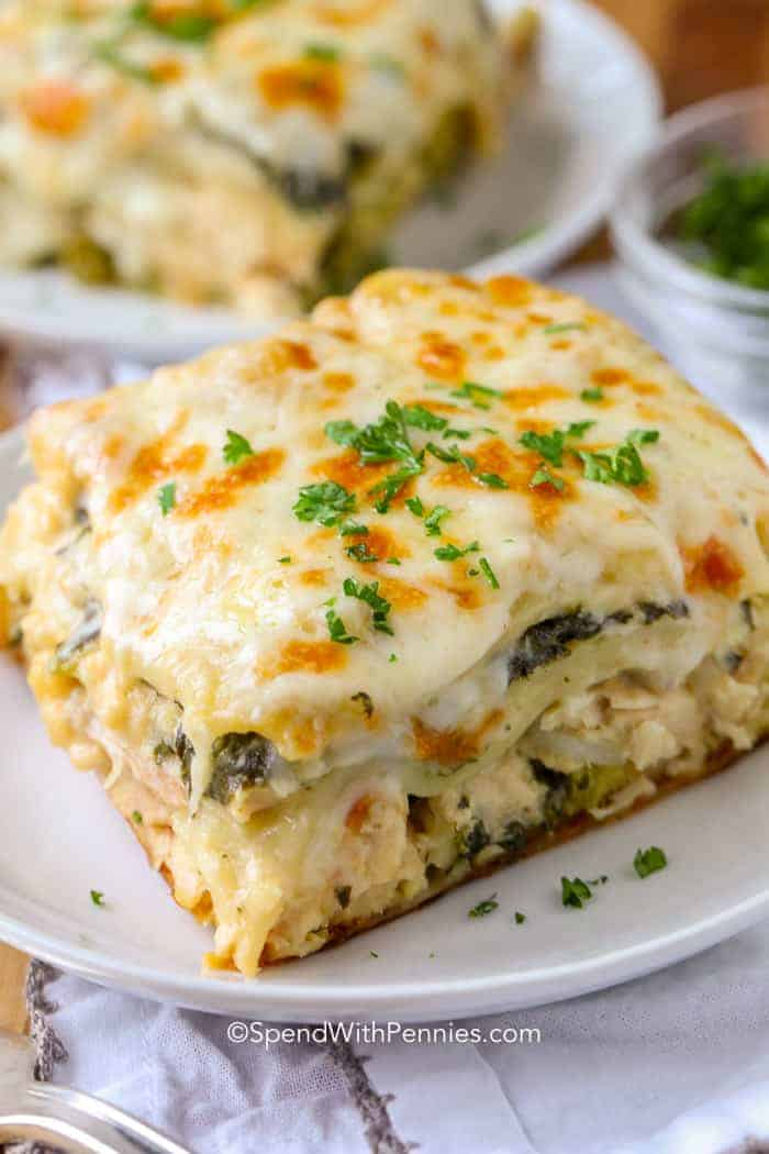 Creamy Chicken Lasagna on white plate