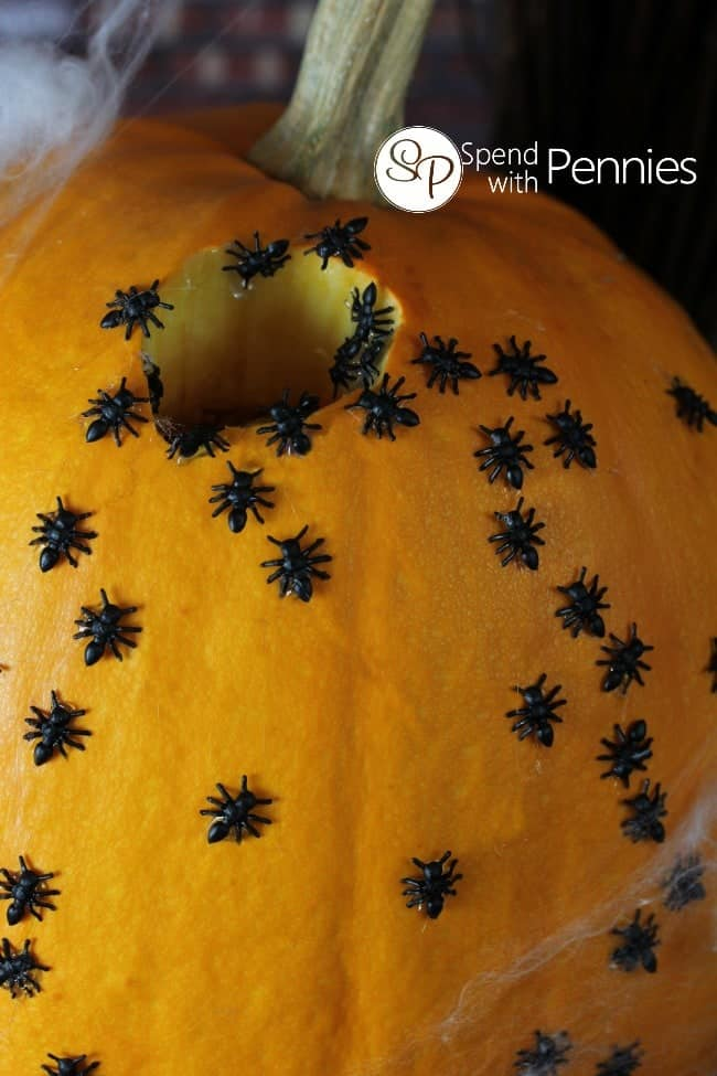 Creepy Crawly Pumpkin!  Such an easy way to decorate!