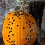 Creepy Crawly Pumpkin in about 5 minutes