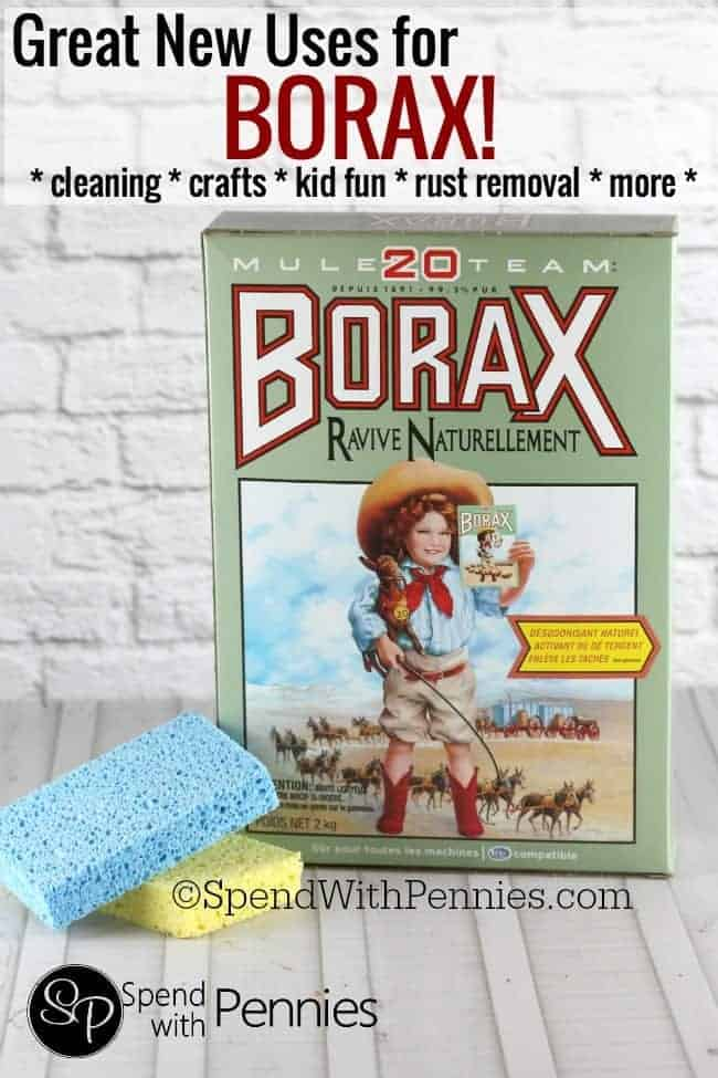 box of borax and sponges