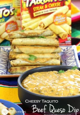 Cheesy Taquito Beef Queso Dip! This perfect party dip is made with seasoned ground beef and tons of cheesy goodness! Quick & easy, it's ready in just 15 minutes!