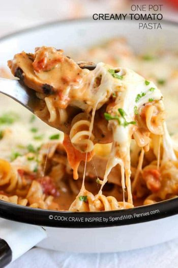 One Pot Creamy Tomato Chicken pasta gooey cheese