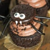 Cupcakes with a peppermint pattie spider