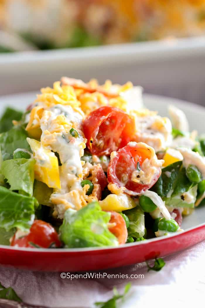 Ranch 7 Layer Salad on a red plate