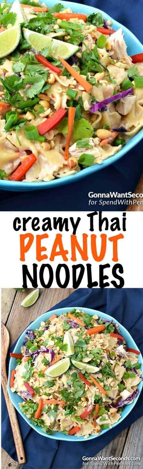 Creamy Peanut Thai Noodles is one dish our whole family agrees on! This easy pasta dish is smothered in a Thai-flavored peanut butter cream sauce and loaded with chicken, red peppers, carrots & green onions for a great family meal.