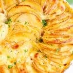 Potatoes Au Gratin baked