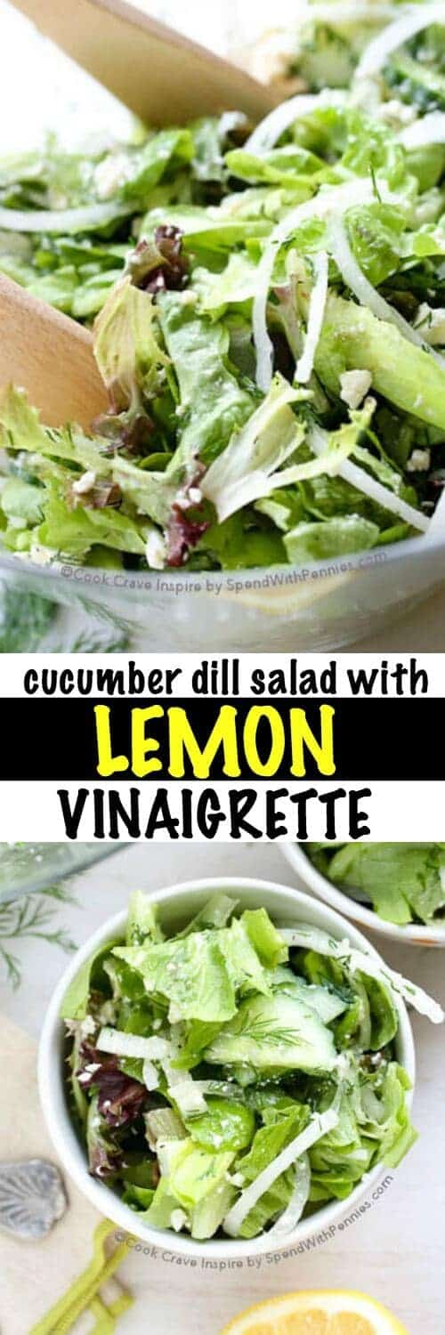Cucumber Dill Salad with Lemon Vinaigrette with a title