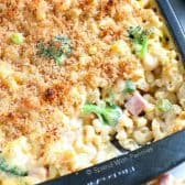 Broccoli Cheese Casserole with Ham
