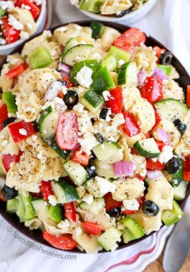 Greek Tortellini Salad is one of our all time favorites! Tender cheese filled tortellini, crunchy peppers, crisp cucumbers and juicy tomatoes, topped with loads of cheese and tossed in a greek flavored dressing!