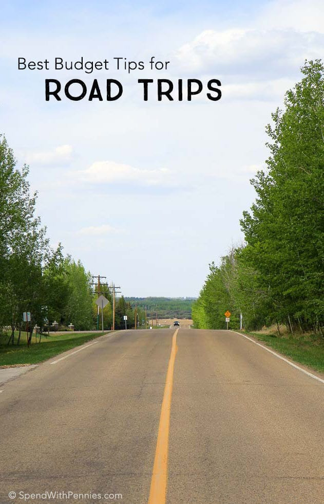 Picture of empty straight road lined with green trees