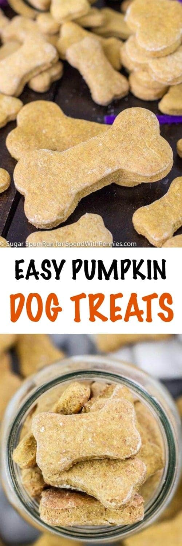 Pumpkin Dog Treats shaped like bones on a table and in a jar