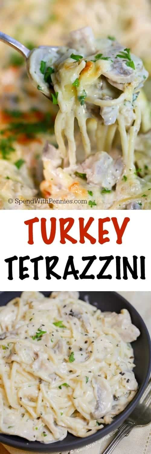 This Turkey Tetrazzini recipe is the perfect way to enjoy leftover turkey.  Tender turkey chunks, mushrooms and pasta are smothered in a rich and creamy sauce and topped with cheese.  Everything is baked until hot and bubbly for a dish hearty enough to satisfy a crowd and tasty enough to get everyone excited about leftovers like never before.