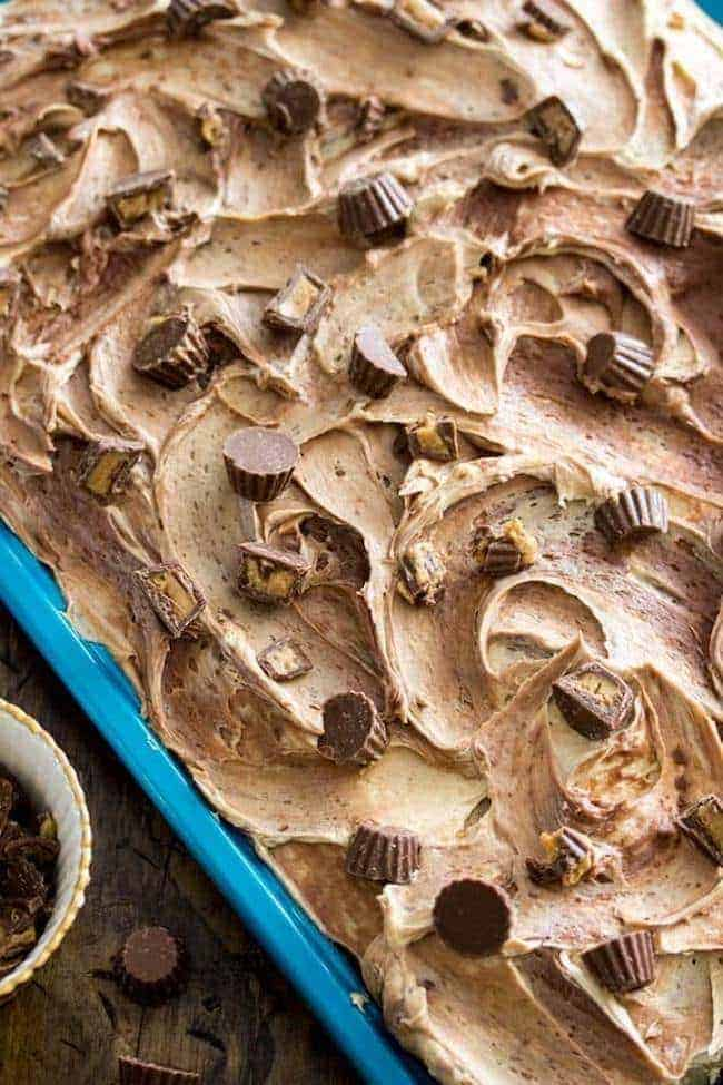 A peanut butter sheet cake with a peanut butter & chocolate swirled frosting, topped with mini peanut butter cups. This cake is sweet without being too sweet, and peanut buttery without being overly so with just the right complement of chocolate.