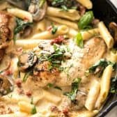 chicken tomato pasta in dish