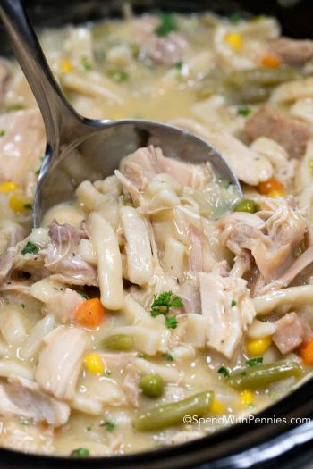 Crock Pot Chicken & Noodles up close