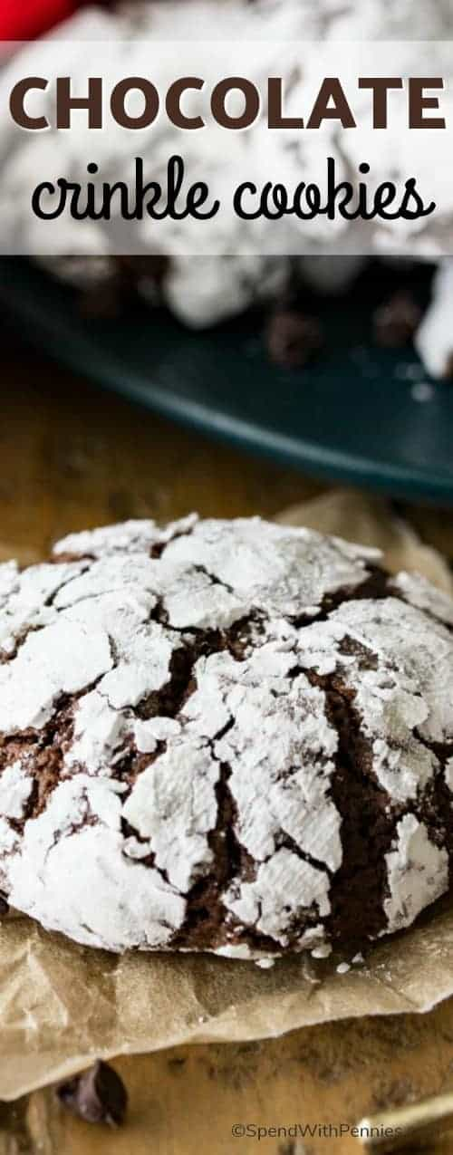 Richly fudgy chocolate crinkle cookies, studded with mini chocolate chips (for extra chocolate flavor), and rolled in powdered sugar!  These are a classic holiday (or anytime) favorite! #spendwithpennies #cookies #holidaycookie #holidays #chocolate