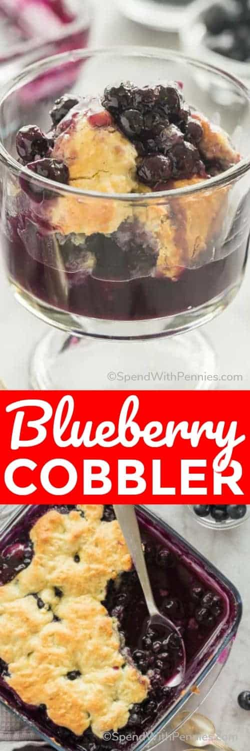 This Blueberry Cobbler is a quick, easy dessert, perfect for showcasing those summer blueberries! It comes together with just 10 minutes prep and is amazing with a scoop of vanilla ice cream or whipped cream to top it all off! #blueberry #dessert #recipe #baking #spendwithpennies #blueberrycobbler