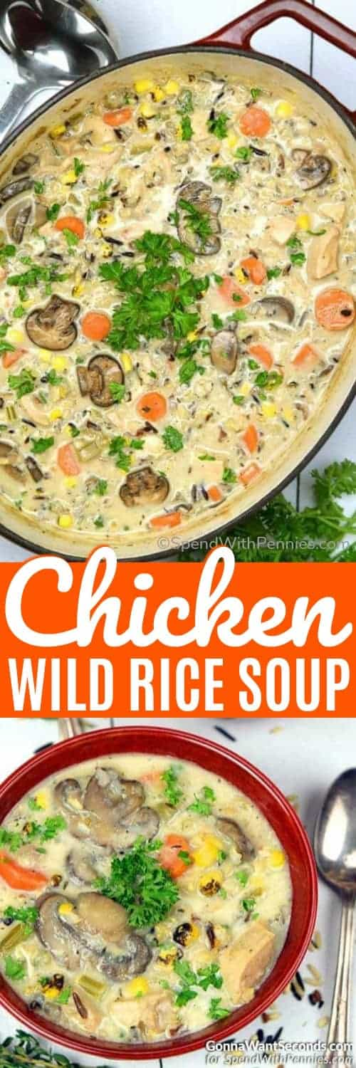 Chicken Wild Rice Soup in a pot and in a bowl with writing