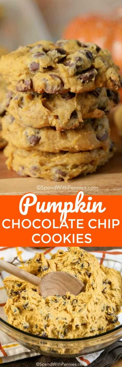 Pumpkin Chocolate Chip Cookies are the perfect comfort food treat for fall! A soft and moist cookie with just the perfect amount of pumpkin flavor and scattered with chocolate chips hits the target for back to school lunches or parties! #spendwithpennies #easyrecipe #easycookie #chocolatechips #pumpkinrecipe #kidfriendly #withpumpkin #easydessert