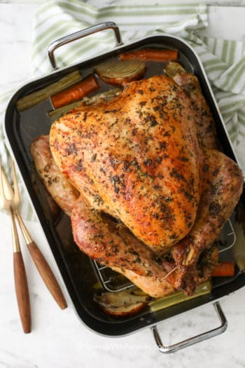overhead of a cooked turkey in a roasting pan