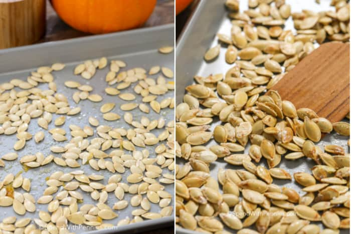 Pumpkin Seeds oiled and scattered on a baking sheet ready to be baked