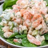 Shrimp Salad served over greens on a white dish