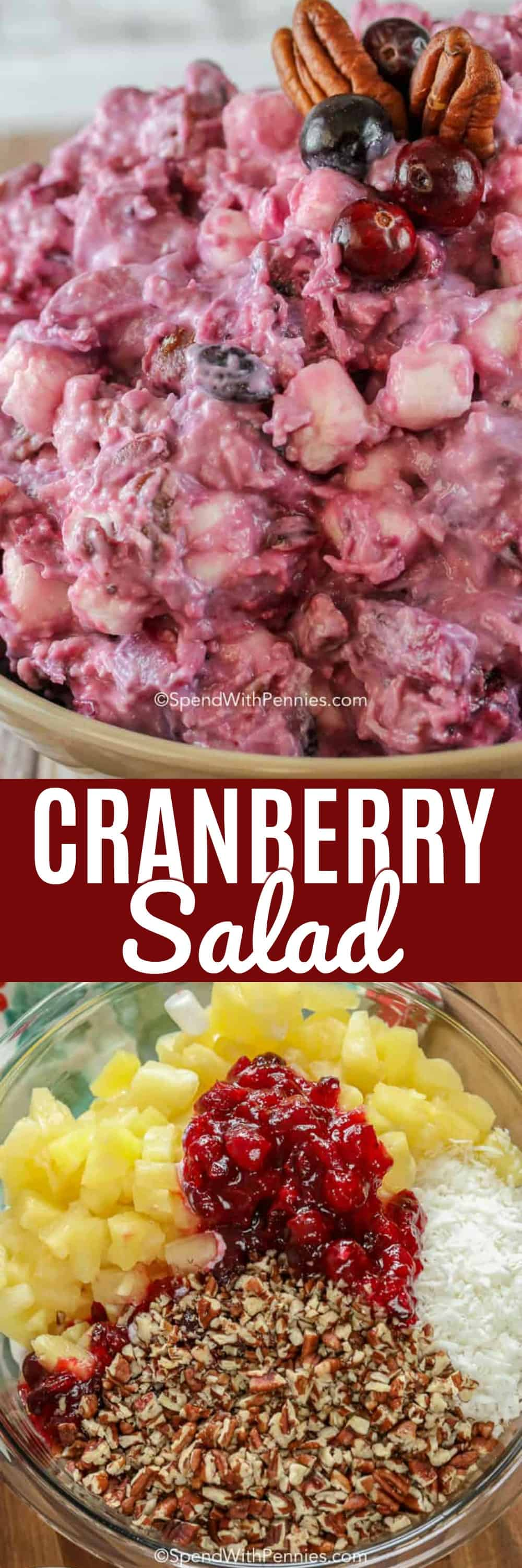 This Cranberry Salad is the perfect side for any turkey dinner! A delicious mixture of fresh homemade cranberry sauce combined with pecans, coconut, marshmallows and pineapple. The result is a sweet and tart side so good you'll want to eat it for dessert too! #spendwithpennies #cranberrysalad #sidedish #easyrecipe #thanksgiving #festivesidedish #festivesalad #withpecans #cranberries