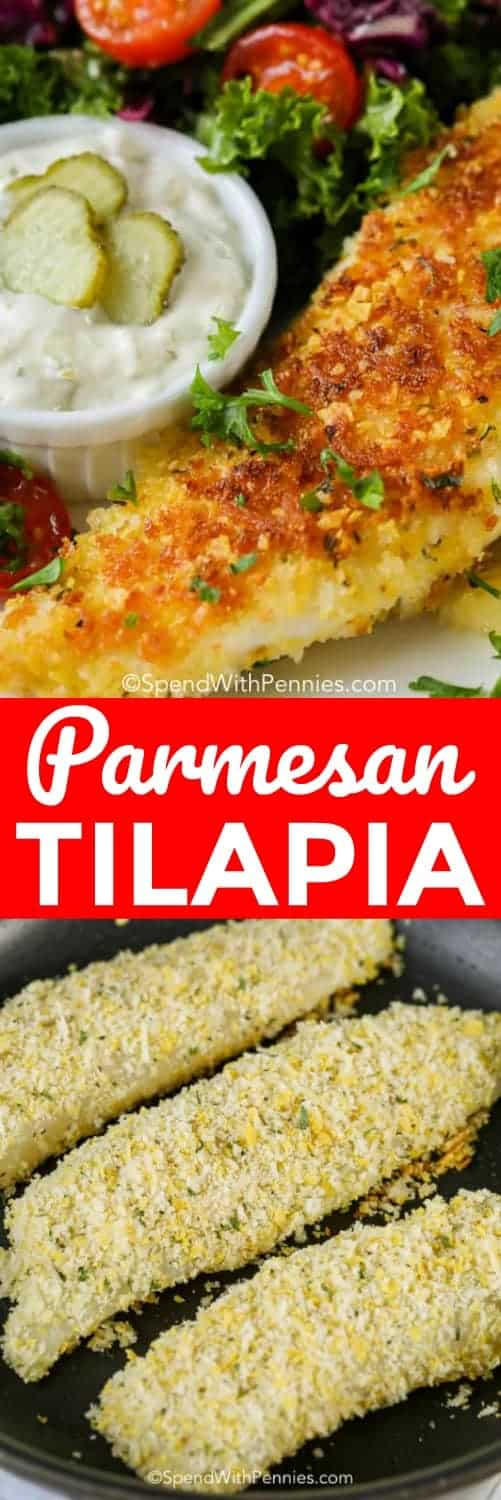 Parmesan Crusted Tilapia is easy to make! Tender tilapia filets aredipped in an egg mixture, coated with parmesan seasoned panko crumbs and pan fried till golden brown. #spendwithpennies #tilapia #fish #seafood #fishrecipe #tilapiarecipe #20minutemeal