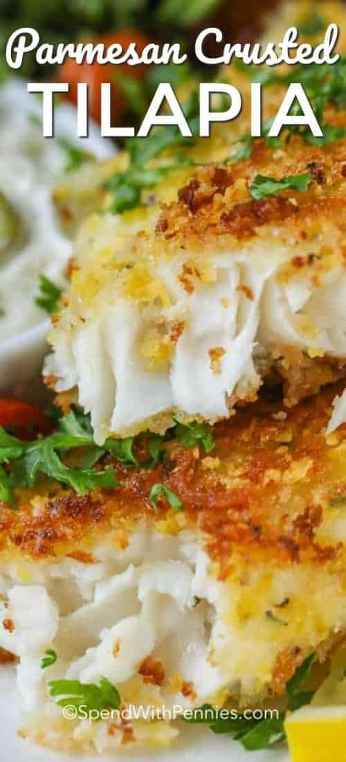 Parmesan Crusted Tilapia served with parsley garnish, flaky and delicious