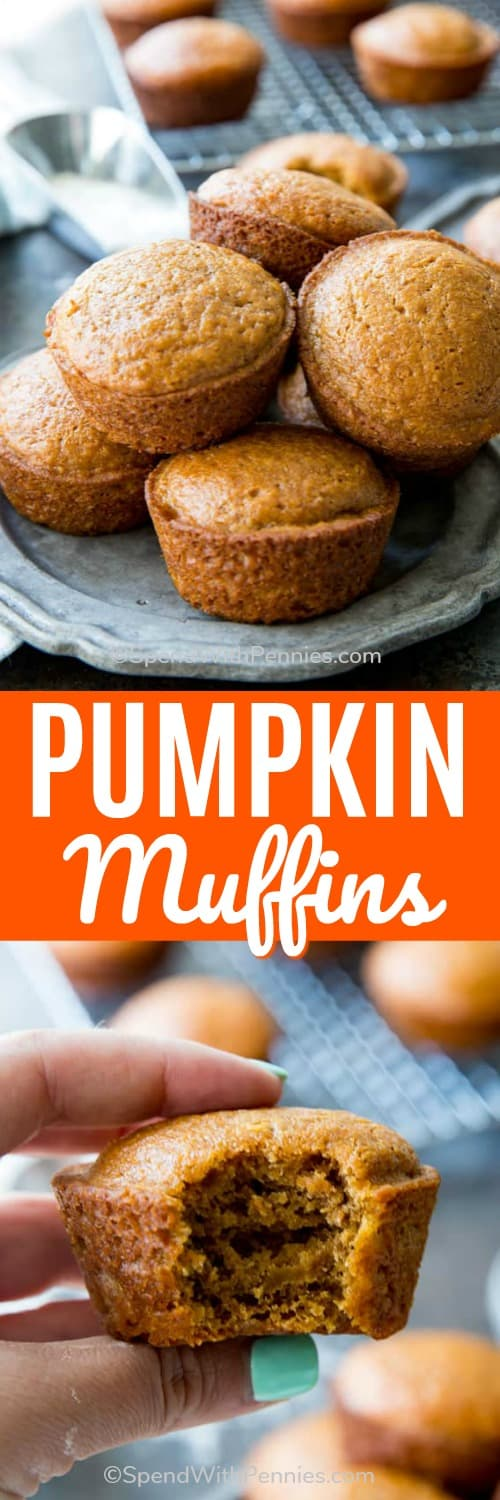 These easy pumpkin muffins from scratch are a fall favorite. They're perfect served warm with butter or topped with a smear of cream cheese! #spendwithpennies #easyrecipe #easymuffins #pumpkinmuffins #pumpkin #fallrecipe #harvest