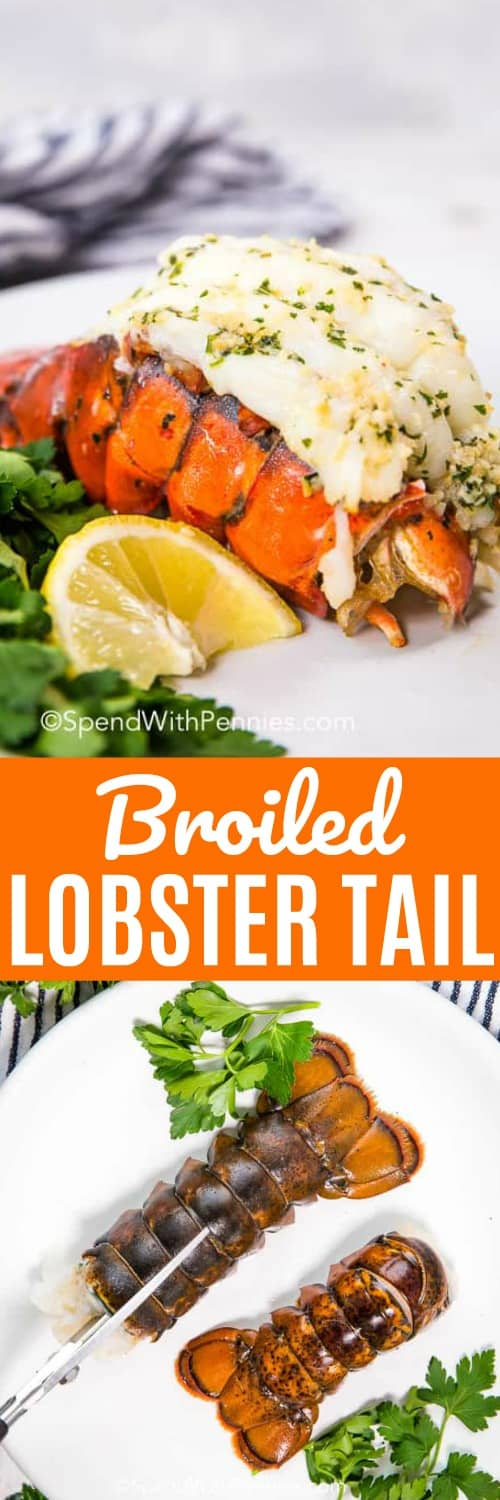 Broiled Lobster Tail is a decadent treat! Sweet lobster meat in a creamy butter sauce with garlic and fresh herbs is so easy to make and incredibly delicious! #spendwithpennies #lobstertail #lobstertails #easyrecipe #garliclobster #broiledlobster #broiledlobstertails #dinner #specialoccasion