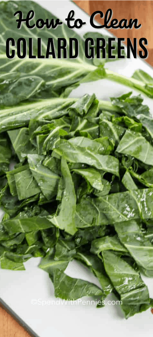 How to Clean and chop collard greens to make a delicious side dish! #spendwithpennies #kitchentips #greens #collardgreens